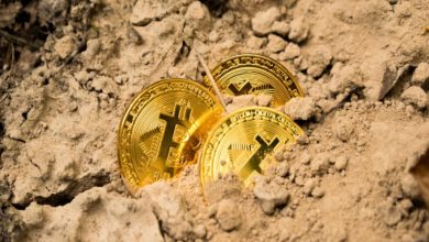 Bitcoin and Other Digital Coins Plunges: Crypto Boom Shaken